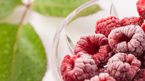 Frozen raspberries in a glass. Isolated on white background Royalty Free Stock Image