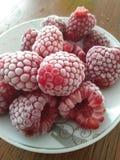 frozen raspberries stock photos