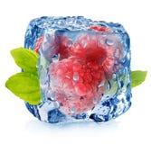Frozen raspberries stock image