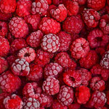 Frozen raspberry background Royalty Free Stock Images