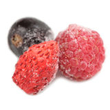 Frozen Raspberry, Blackcurrant and Wild Strawberry Royalty Free Stock Image