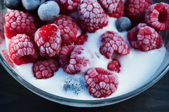 Frozen raspberry and blueberry with ice cream in a glass bowl. Close up Royalty Free Stock Photos