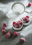 Frozen raspberry with sour cream Royalty Free Stock Images