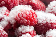 Frozen red berries Close-up. Raspberry in ice and snowflakes Stock Image