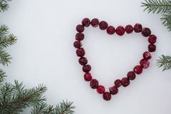 Frozen red cherries laid out in the shape of a heart with fir tree branches on white snow background royalty free stock photo