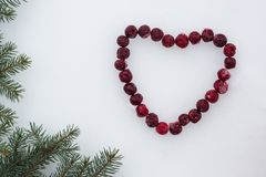 Frozen red cherries laid out in the shape of a heart with fir tree branches on white snow background stock image