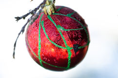 Frozen Red Christmas Ornament Decorating a Snowy Outdoor Tree Stock Image