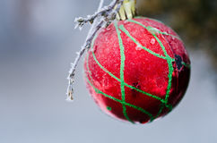 Frozen Red Christmas Ornament Decorating a Snowy Outdoor Tree Stock Photo