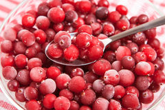 Frozen red cranberry in bowl Stock Photography