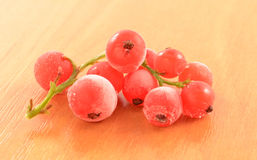 Frozen red currant Stock Photo