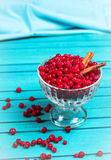 Frozen red currant berries in a glass bowl with cinnamon Stock Photos