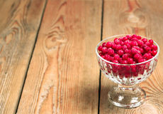 Frozen red currant berries in a glass bowl Royalty Free Stock Images