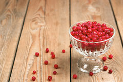 Frozen red currant berries in a glass bowl Royalty Free Stock Photo