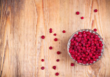 Frozen red currant berries in a glass bowl Stock Images
