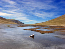 Frozen Red Lake. Beautiful frozen red lake in the Puna. Jujuy, Argentina Stock Photography