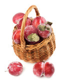 Frozen Red Plums Royalty Free Stock Photo