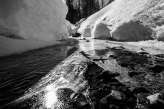 Frozen river- bw. Frozen river in Stelvio nature park Stock Photography