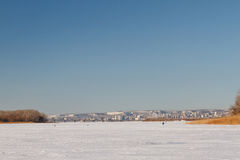 The frozen river with a dry cane on the island Royalty Free Stock Image
