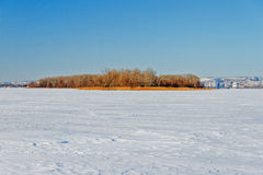 The frozen river with a dry cane on the island. Natural winter background. An icy white expanse of the frozen river with a dry cane on the island against the Royalty Free Stock Image