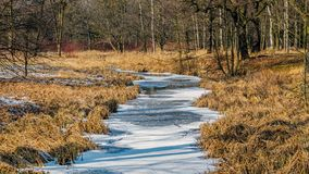 A frozen river Stock Photography