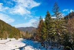 Frozen river in forested mountains. Beautiful nature scenery on fine winter day Royalty Free Stock Image