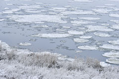 Frozen river ice floes Stock Photography