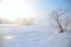 Frozen river and lonely tree at right Stock Photo