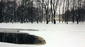 Frozen river Moika and the park. Winter View of the partially frozen river Moika and the park of the Russian Museum, St. Petersburg, Russia stock video