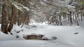 Frozen river. Royalty Free Stock Photos