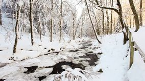 Frozen river in the snow stock video