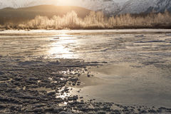 Frozen river with sun glow Royalty Free Stock Image