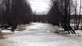 The frozen River with trees around, the forest and the field are near, spring time. The frozen River with trees around, the forest and the field are near stock video footage