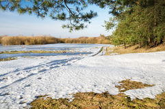 Spring season. Frozen river and trees in spring season Royalty Free Stock Images