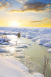 Frozen river and trees in winter season. Stock Photography
