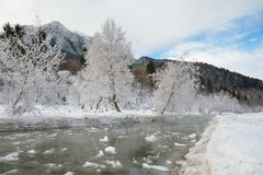 Frozen river Royalty Free Stock Photo