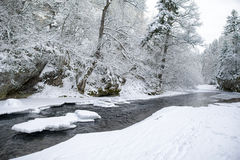 Frozen river in winter forest Royalty Free Stock Photos