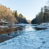 Frozen river in winter. With sandstone cliffs and ice blocks. Gauja National Park. Latvia Royalty Free Stock Images