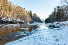 Frozen river in winter. With sandstone cliffs and ice blocks. Gauja National Park. Latvia Royalty Free Stock Photos