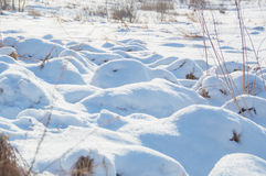 Frozen river in winter on a Sunny day Royalty Free Stock Photography