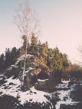 Frozen river in winter -vintage retro effect Royalty Free Stock Photography