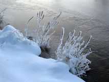 Frozen riverbank Royalty Free Stock Image