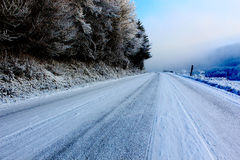 Frozen darkness road. Frozen white road in a cold winter day with some fog Royalty Free Stock Photos