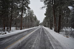 Frozen Road royalty free stock photos