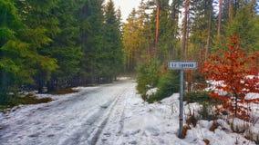 Frozen Road in Lipno Forest. Snowy frozen road to the Trail Trees Lipno Lookout in Southern Bohemia, Czech Republic Royalty Free Stock Photo