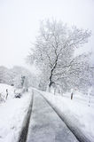 Frozen road in winter Royalty Free Stock Image