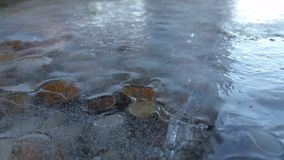 Frozen rock. Water frozen over rocks on a sunlight afternoon Royalty Free Stock Photo