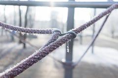 Frozen rope Stock Photo