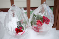 A frozen rose inside ice Royalty Free Stock Photography