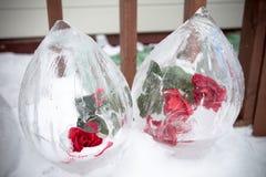A frozen rose inside ice Stock Photos