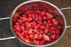Frozen rosehips in cooking pot Royalty Free Stock Photography